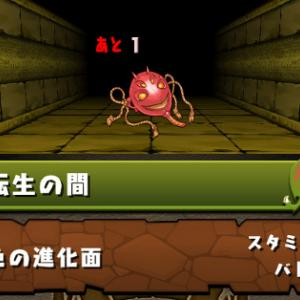 【パズドラ】11月24日(火)のゲリラ時間割【アムネル降臨・転生の間・キング】