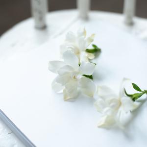 ★【三大香木】くちなしの甘い香りは、夏の訪れを告げる