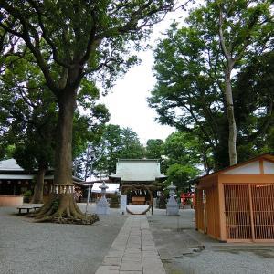 横浜・星川 杉山神社の夏越祭