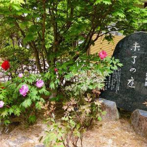 牡丹園「未了の庭」 秩父観音 第26番 円融寺