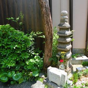 京都東山 新緑散策 明智光秀の塚