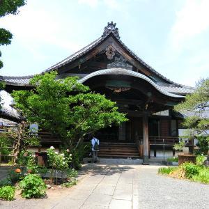 お戒壇巡りと一初(イチハツ)の庭 京都の善光寺 得浄明院