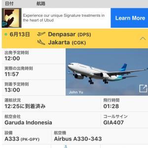 バリ島 イミグレオープンしています 航空会社も今後のスケジュール発表!