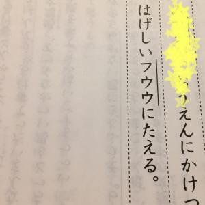 【 日能研 全国テスト 小3 】こんなに難しいの? Mクラス合格通知