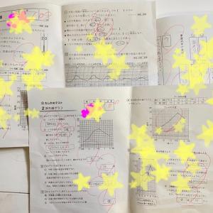 【 テストどれも100点だけど焦る 小4学力の差 中学受験探求と RISU算数 】