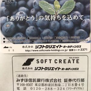 ソフトクリエイト(3371)