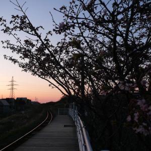 花咲線向け526号は検査明け運用