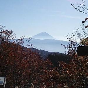 安宿からの旅・山梨・昇仙峡の紅葉巡り(2019/11)(1/2)