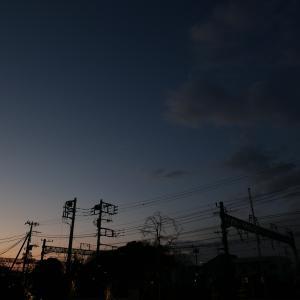 【今日の写真】朝と昼休みにて【2020/1/15】
