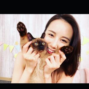 【画像】森川夕貴アナの新作猫動画のおっぱいが凄い!!