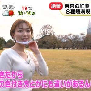 【画像】めざましテレビの阿部華也子ちゃん、乳もケツもデカかった!