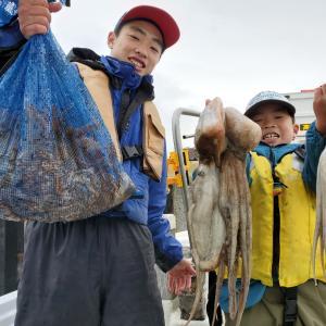 3月のタコ釣り釣果 part4