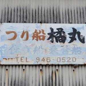 6月9日S丸、橘丸釣果