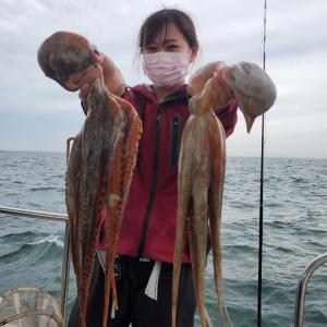 タコ釣り釣果~6月週末