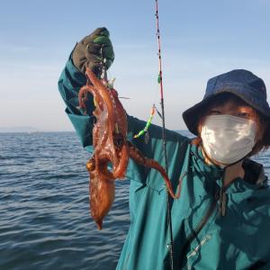 タコ釣り釣果~平日
