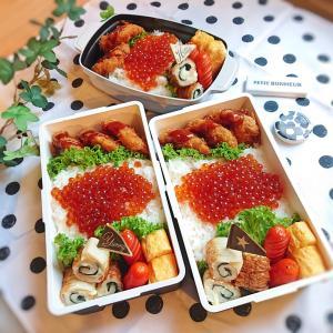 **リベンジ必須のイクラ丼弁当**