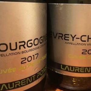 Gevrey Chambertin Cuvee de l'aulne 2017 (Laurent Ponsot)