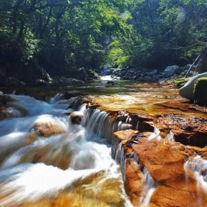 渓流釣りの風景 ⑭
