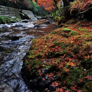 紅葉が訪れた五宝の滝
