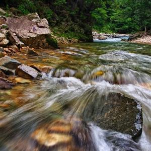 渓流でフライフィッシングの風景 ⑪