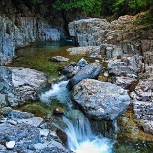 渓流フライフィッシングの風景 ⑫