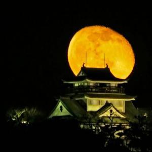 満月と小牧城