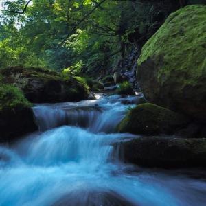 渓流フライフィッシングの風景 ⑥
