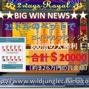 勝てるオンラインカジノ ワイルドジャングルカジノ!!ビデオポーカーでも出まくり!!
