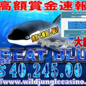 ワイルドジャングルカジノでグレートブルーが大爆発!!1週間で約1800万円!!!!