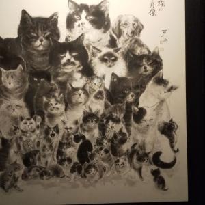 猫・美術館
