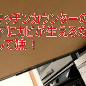 なぜ一条工務店のキッチンの下にカビが生えるのか?原因と対処方法についての一考察(一条工務店さん作業指示書の変更をお願い!)