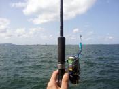 釣り具の売却にオススメの店舗やサイト、及び査定金額アップの為にしておくこととは?