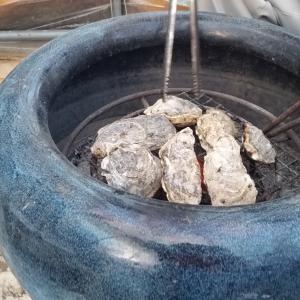美味しい牡蠣と、初めての釣り堀仮屋湾遊漁船センターと、年始の釣りがイワシ祭り