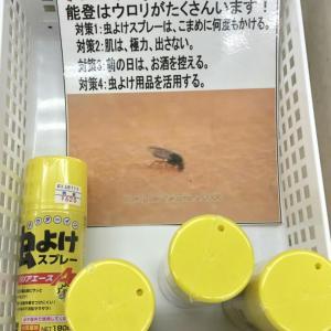 能登島キャンプ part1 ~松島オートキャンプ場~