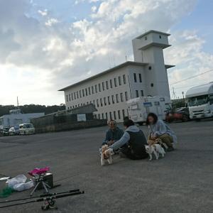 愉快な仲間達とキャンプオフin静岡~part1~