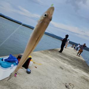 能登釣り旅 part3