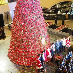 「リージェント台北」のクリスマスツリー点灯式に行ってみました!