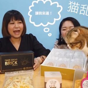 台湾おすすめ土産紹介動画!最近イチオシのお土産はコレ!!猫乱入?!