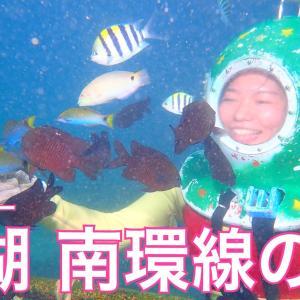 魚と一緒に海底散歩& サンゴ再生プロジェクト& 地元の文化体験「澎湖 南環線の旅」!