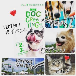 5/2.3 LECT DOG  GREETING♪