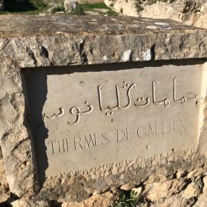 VOLUBILIS モロッコ ヴォルビリスに残る古代ローマ遺跡のモザイク 月の女神 ディアーナ