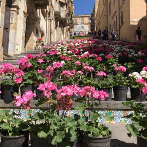 SCALONE A CALTAGIRONE 世界遺産 カルタジローネに残る愛のお話しと大階段