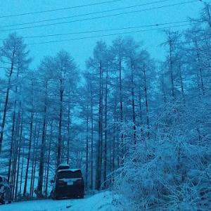 雪降って寒い_晴れたら暑い!
