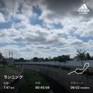 走っておりますよ。