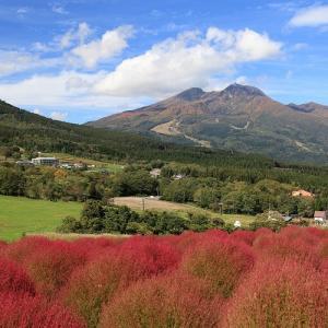 妙高高原とコキア