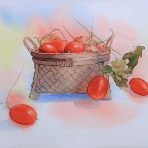 啓子おばさんの水彩レッスンⅡバックの色を利用して描く烏瓜の静物