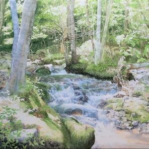 早春の渓流(鬼怒川の奥)を描いて見ました。