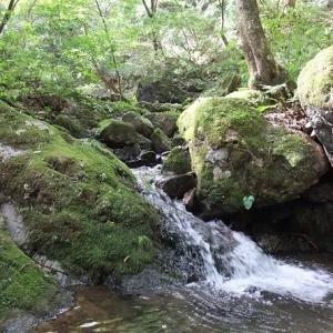啓子おばさん水彩レッスン12奥多摩の渓流を描く