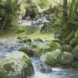 『木漏れ日の渓流』と奥多摩散策