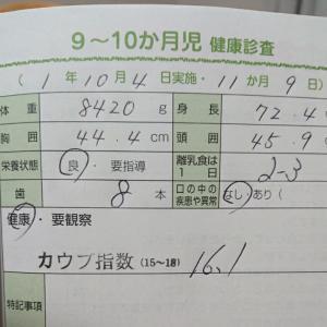 後期健診*11m9d